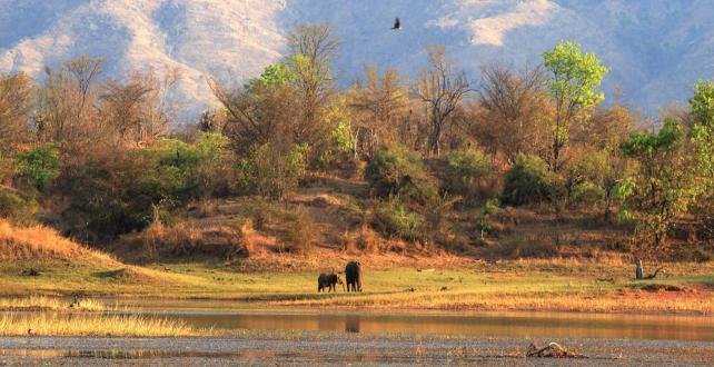 Safari de 11 jours / 10 nuits - Le meillleur du Zimbabwe..